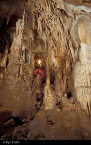81029-barlang1